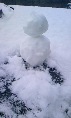 舞え、袖白雪